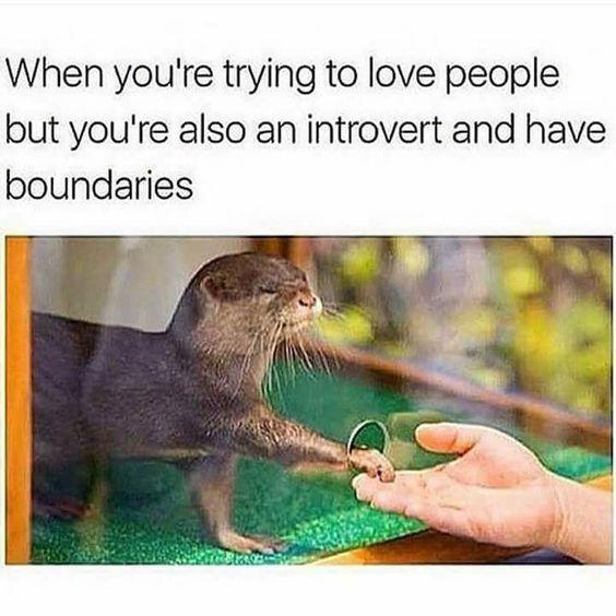 introversion and creativity, introvert meme Aspasía S. Bissas