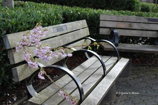 0 bench