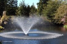 0 fountain