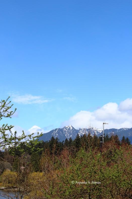 0 mountain 2