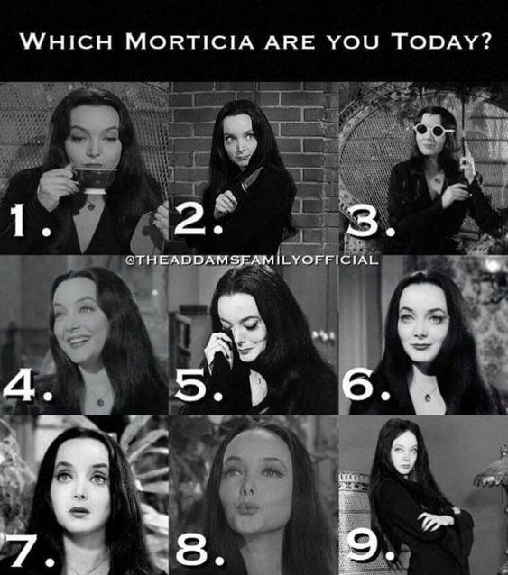 which morticia