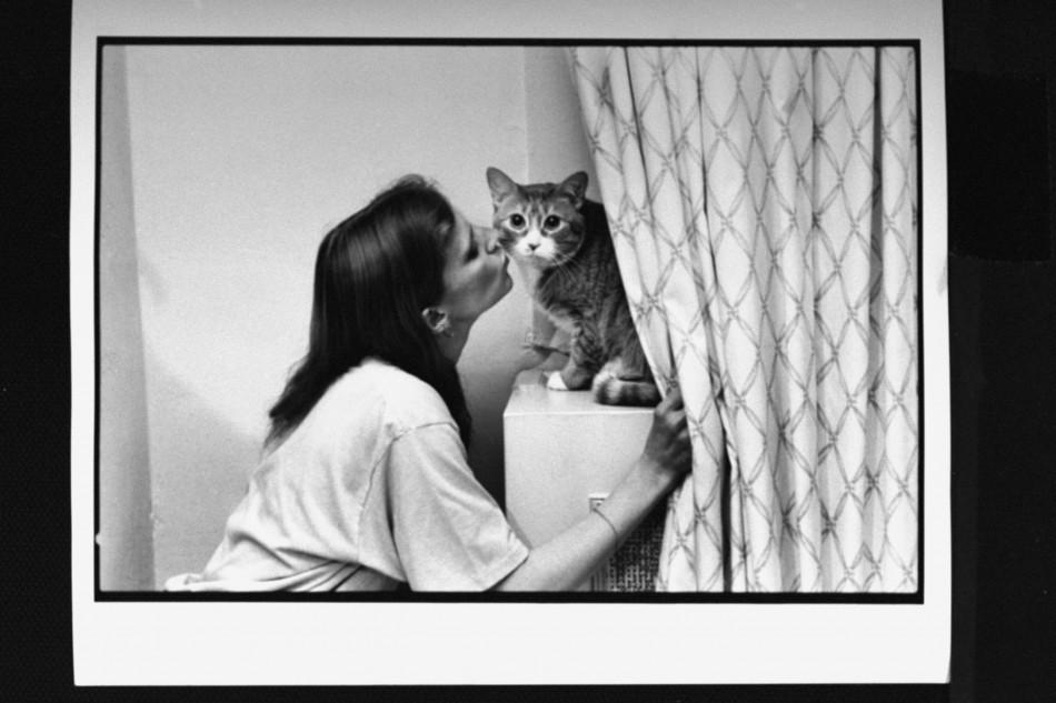 ann m martin cats