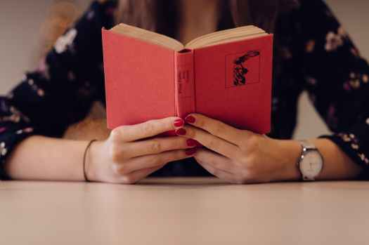 adult blur book business