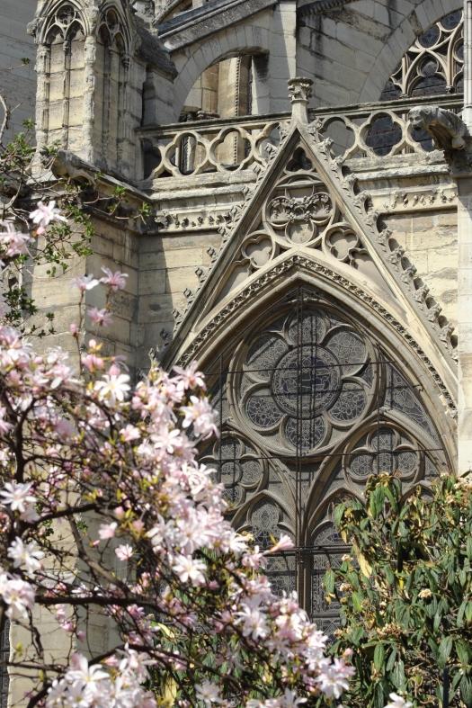 Notre Dame Cathedral, Paris, 2016