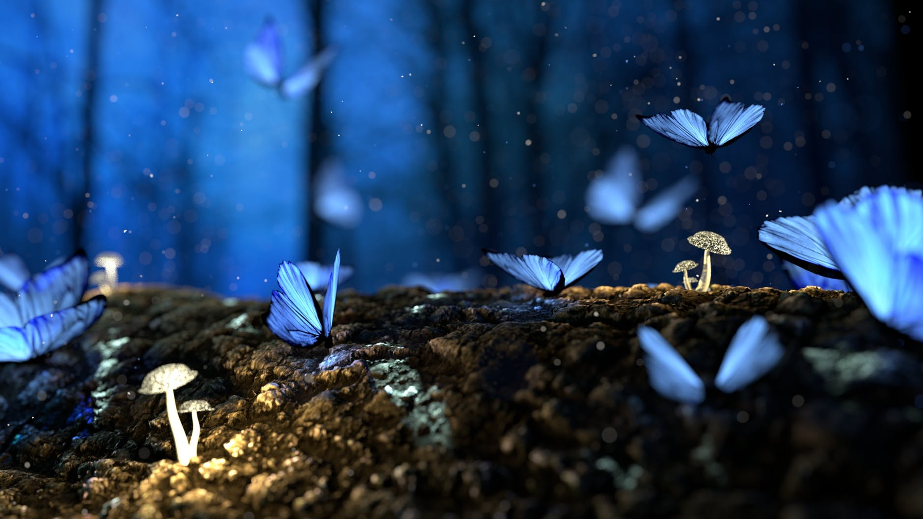 Should you write what you know, blog post by Aspasia S. Bissas, aspasiasbissas.com, write, writing, writers, am wtiting, writing tips, butterflies, magic, fantasy