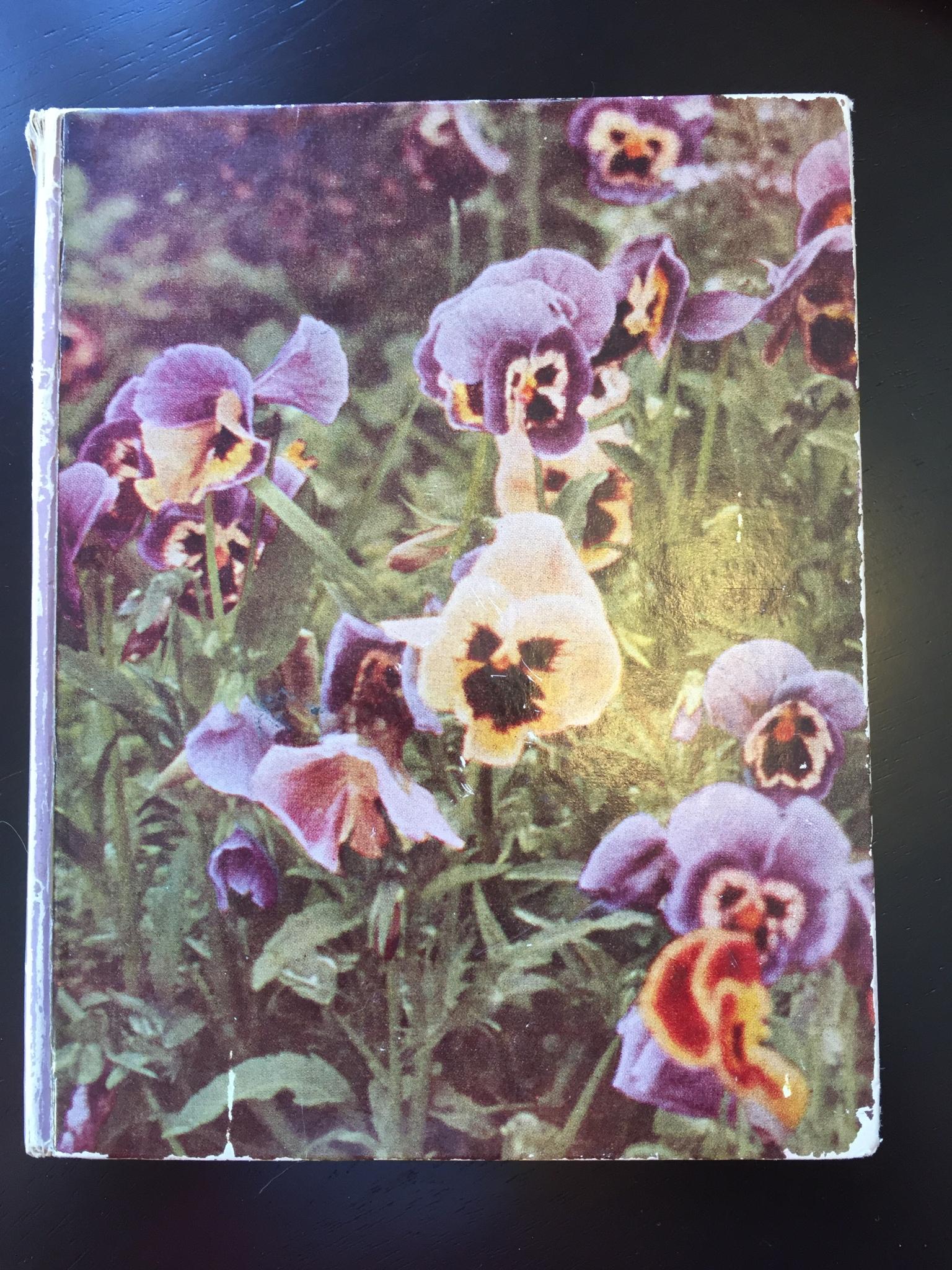 Off My Bookshelf blog post by Aspasia S. Bissas