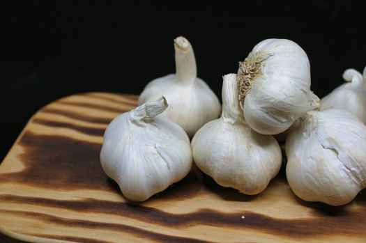Vampire's Garden: Garlic, blog post by Aspasia S. Bissas