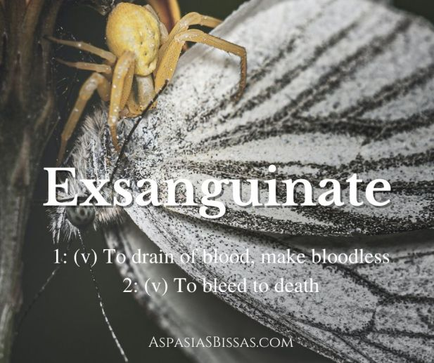 6 Words About Vampires, blog post by Aspasia S. Bissas, word, words, vocabulary, vampire, vampires, exsanguinate, exsanguination, word meaning bleed to death, x files, pinnable image, aspasiasbissas.com