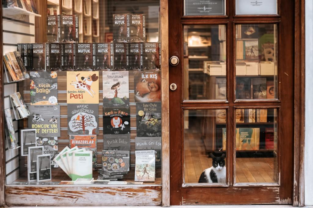 More Bookstore Cat Love, blog post by Aspasia S. Bissas. aspasiasbissas.com, books, bookstores, cat, cats